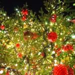 「あぁ~もうすぐクリスマスだな」と思うイギリスのお店テレビCM(2014年度版)