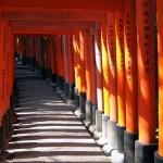 【英語関連資格】東京オリンピック開催で需要が拡大!通訳案内士という資格