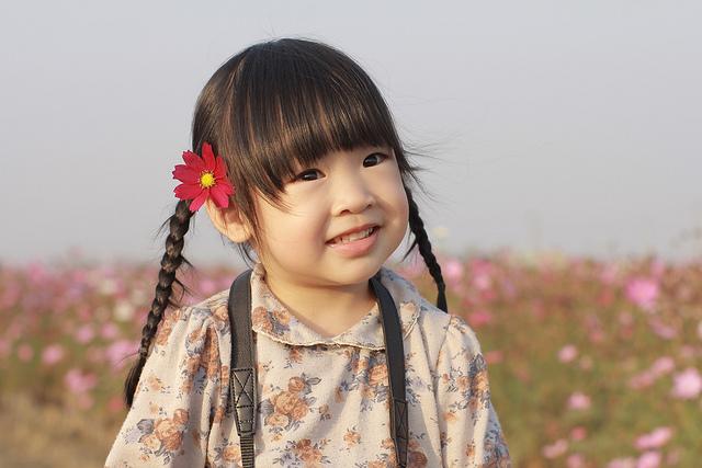 すべての講義 四歳 勉強 : オッサンママが4歳児に学ぶ ...
