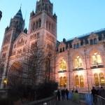 【子連れ観光】ロンドンの自然史博物館に行ってきたよ。